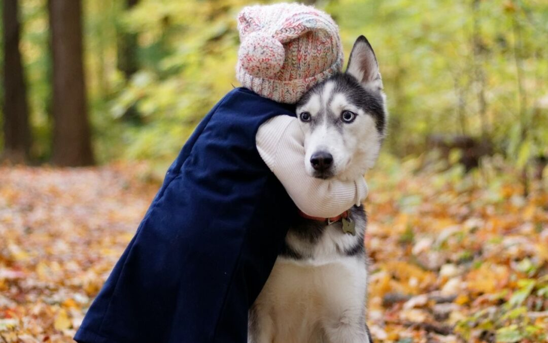 Dogs – Our Best Friends